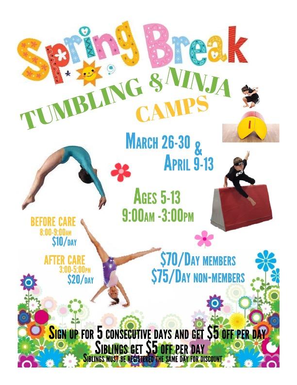 Spring Camp